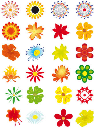 sunflower isolated: Collection of flowers for design. Vector illustration