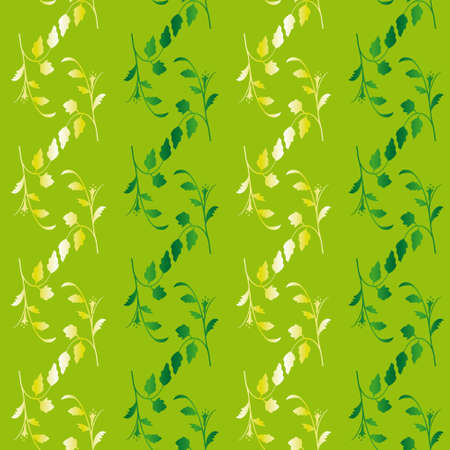 Seamless background of green and white.  Vector