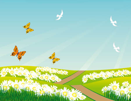 Birds and butterflies over the meadow.illustration Vector