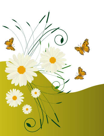 naturism: Abstract background with daisies and butterflies  Illustration