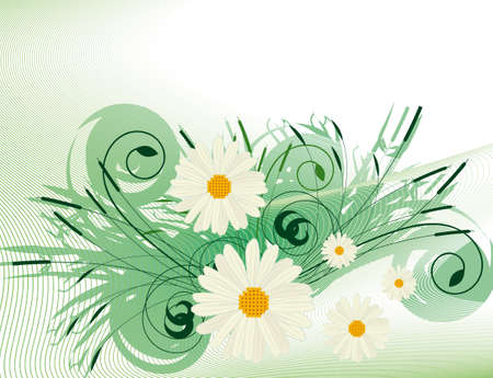 naturism: Abstract background with white daisies Illustration