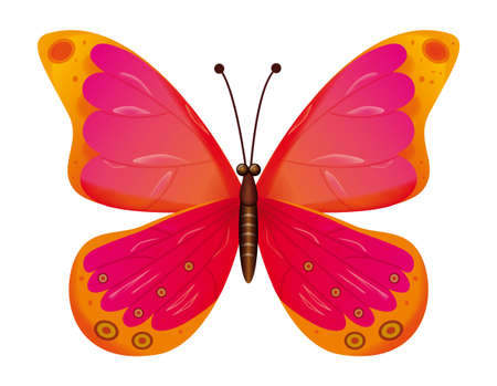 A beautiful red butterfly isolated.  Vector