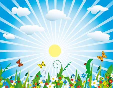 The sun over a flourishing meadow. Vector illustration Stock Vector - 8147526