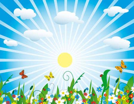 The sun over a flourishing meadow. Vector illustration Stock Vector - 8147526