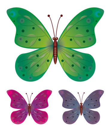 A collection of three butterflies. Vector EPS10 Vector
