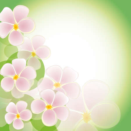 naturism: The green background with pink flowers. Vector illustration