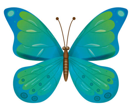 naturism: A beautiful blue butterfly isolated.  Vector illustration Illustration