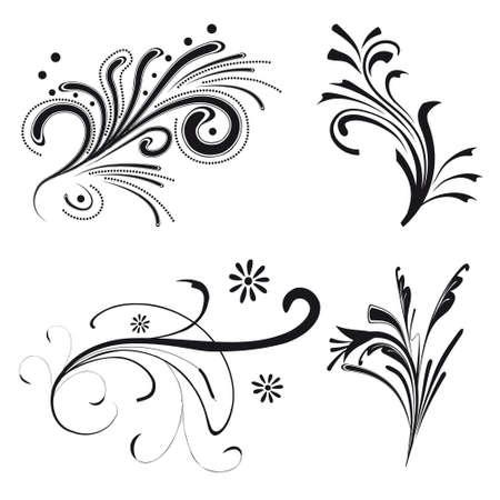 Set of floral design elements. illustration Vector