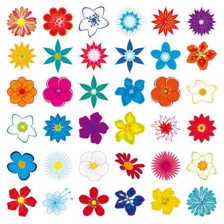 flor: Una colección de flores para el diseño. Ilustración vectorial Vectores