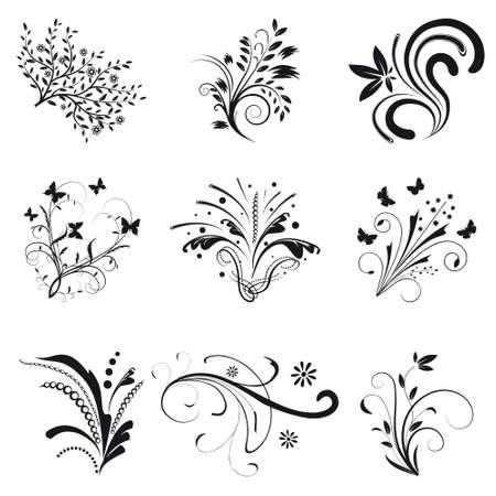 free place: Set of floral design elements. illustration Illustration