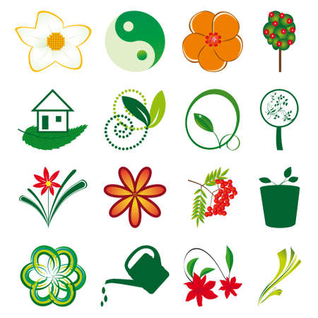 A collection of natural elements for design. Vector illustration Stock Vector - 8487194