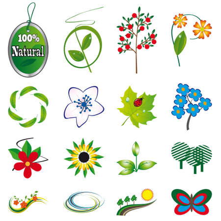 A collection of natural elements for design. Stock Vector - 8535082