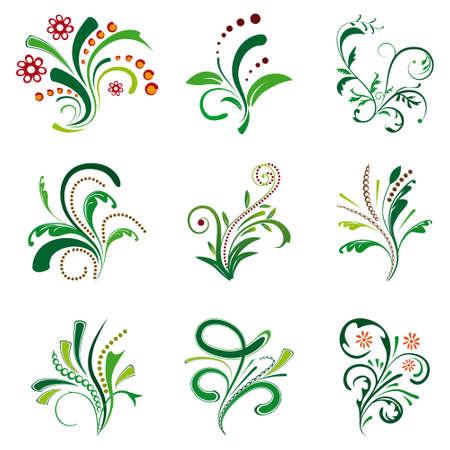 Set of floral design elements. Vector
