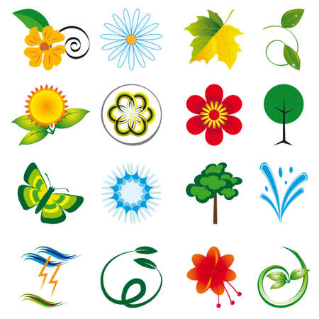 A collection of natural elements for design. Stock Vector - 8535090