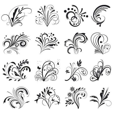 Set of floral design elements. illustration Stock Vector - 8582684