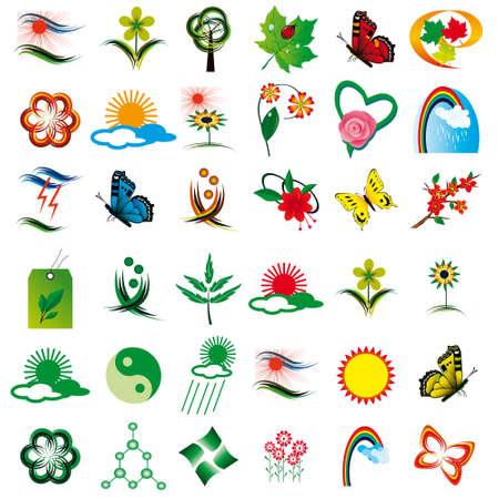 Set of floral design elements. illustration Stock Vector - 8675067