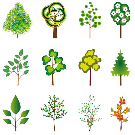naturism: The collection of trees for design. Vector illustration