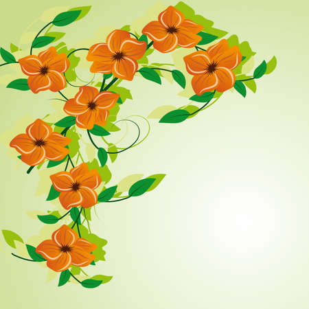 naturism: Abstract background with orange flowers