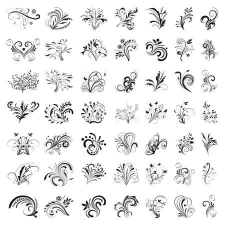 Set of floral design elements.  Illustration