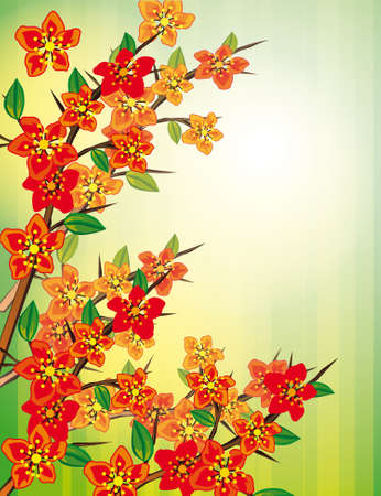 naturism: Green background with red flowers. Vector illustration Illustration