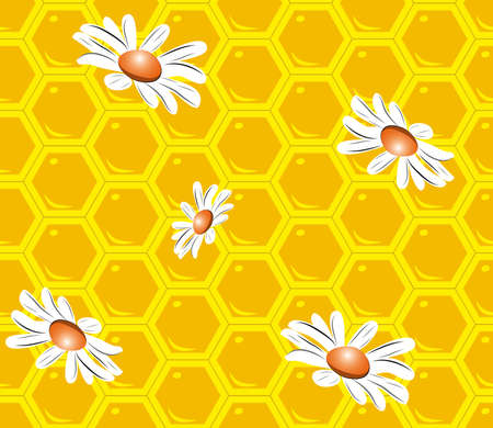 camomile: Seamless background with bee honeycombs