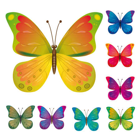 naturism: A collection of colorful butterflies  Illustration
