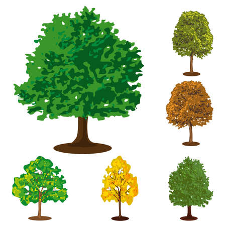 Set of six isolated trees. Vector illustration