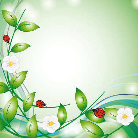 naturism: Summer background with flowers and ladybirds. Vector illustration