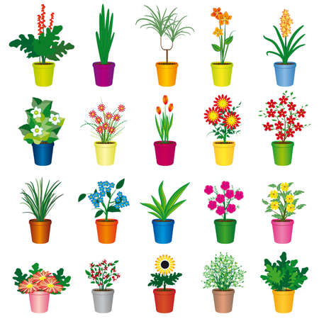 plant pot: A set of colorful pots of flowers. Vector illustration