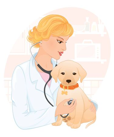 Woman veterinarian making a checkup of a labrador retriever puppy. Vector