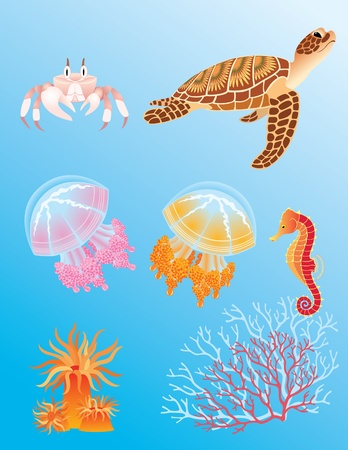 Set of sea animals: crab, turtle, jellyfish, sea horse, actinia and corals.
