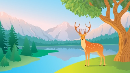 The beautiful landscape of a  mountain lake.  Stock Vector - 9642448