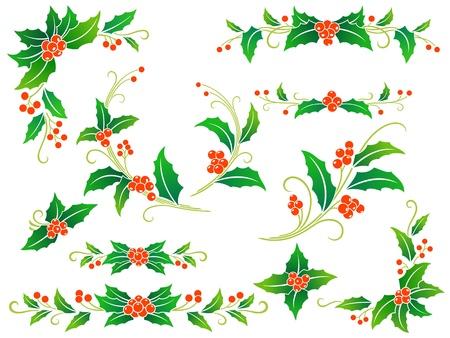 houx: Collecte des branches de houx de d�coration pour votre conception: les coins, se divise, les �l�ments du ch�ssis et de rosaces. Illustration