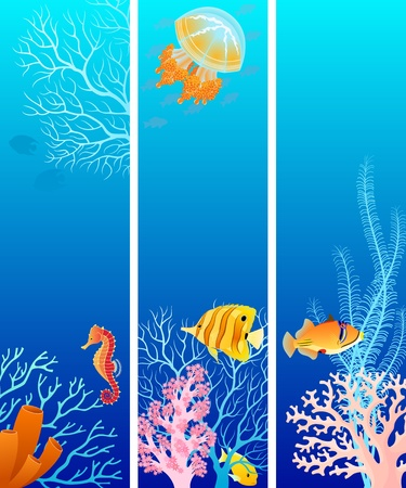coral reef: Set of vertical banners for your design.