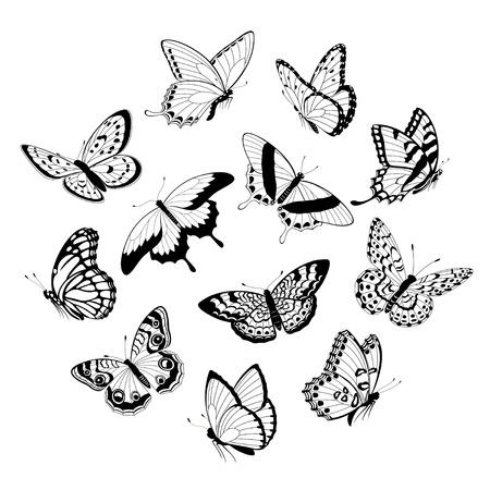 butterflies flying: Set di farfalle volanti in bianco e nero isolato su sfondo bianco