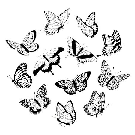 Set of flying black and white butterflies isolated on white background