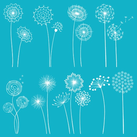 dandelion abstract: Set of hand drawn dandelions for your design.