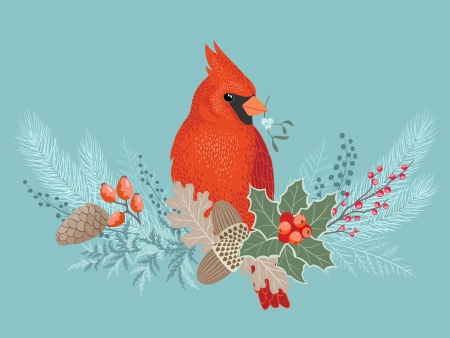 Cardinal bird on frosty Christmas decoration. Vector