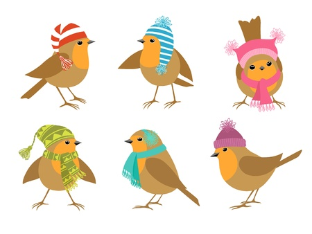 scarves: Funny Robins birds in winter hats  Illustration