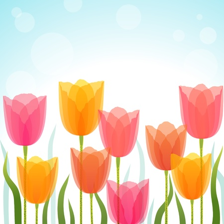 Colorful tulips on light blue background. Vector contains transparent objects. EPS 10. Stock Vector - 17454577