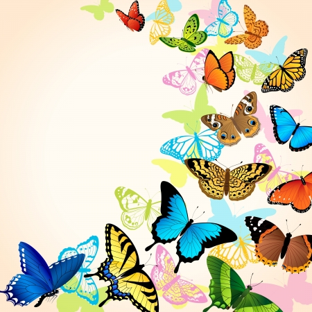 Background with bright coloful butteflies