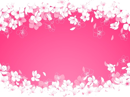 Spring background with cherry flowers  Illustration