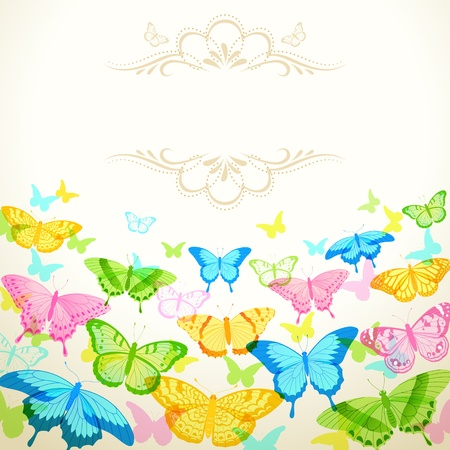 green butterfly: Colorful butterflies and frame for your text.