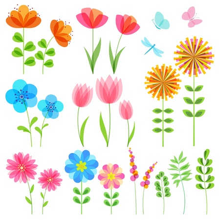 Floral design elements with transparent details. EPS 10. Vector