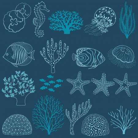 Collection of design elements: corals, fishes,  jellyfishes, sea horse and sea stars.