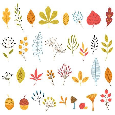 Set of hand drawn autumn floral design elements. Illustration