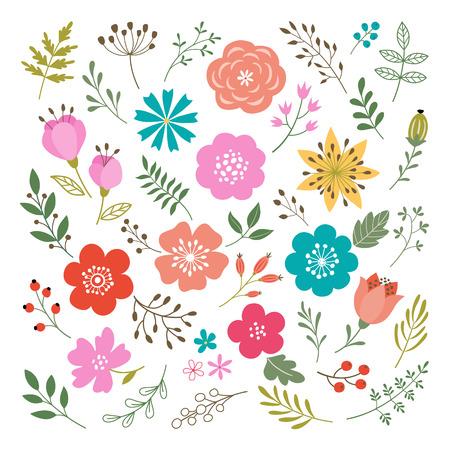 primavera: Conjunto de flores y elementos florales aislados en fondo blanco. Vectores