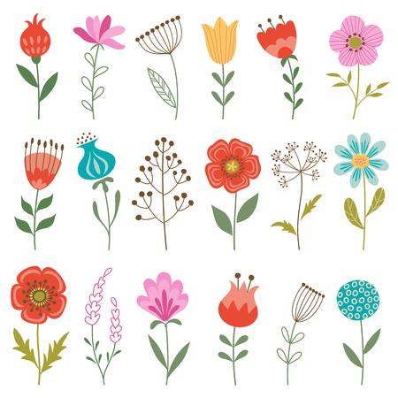 Set of colorful flowers isolated on white background.