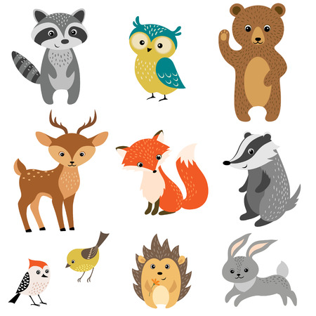 Set of cute woodland animals isolated on white background. Çizim