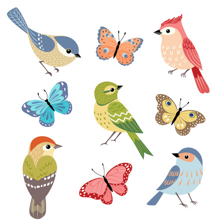 Set of colorful birds and butterflies isolated on white background.